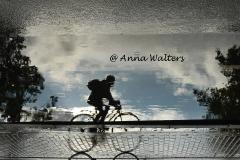 AAnna Walters de eenzame fietser 906x606A1200
