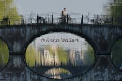 AAnna Walters grachtenfiets 906x606-rechtA1200